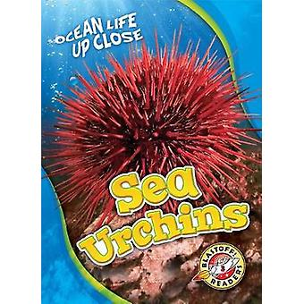 Sea Urchins by Heather Adamson - 9781626176461 Book