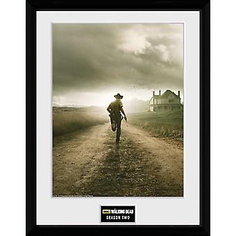 The Walking Dead Season 2 Framed Collector Print 40x30cm