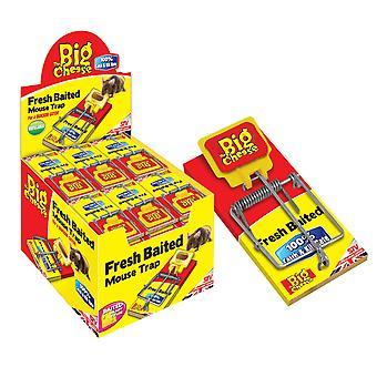 Den store ost friske madding musefælde (pakke med 30)