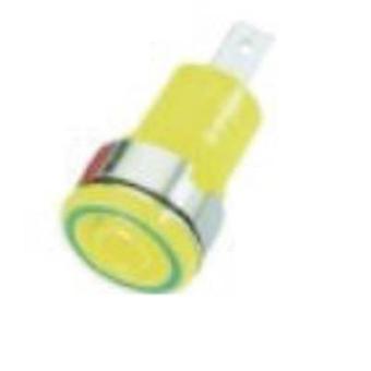 Stäubli SLB 4-F6,3 Safety jack socket Socket, vertical vertical Pin diameter: 4 mm Green-yellow 1 pc(s)