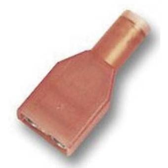 TE Connectivity 2-520103-2 Blade terminal Connector width: 6.3 mm Connector thickness: 0.8 mm 180 ° Insulated Red 1 pc(s)