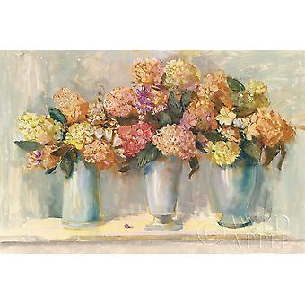 Fall Hydrangea Bouquets Poster Print by Carol Rowan
