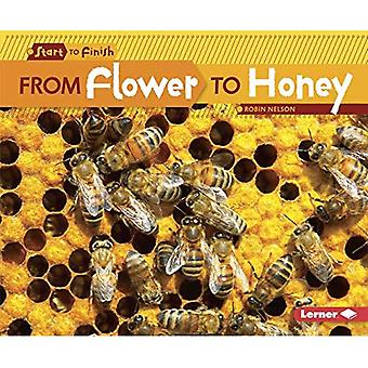 From Flower to Honey (Start to Finish, Second)