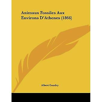 Animaux Fossiles Aux Environs D'Athenes (1866)