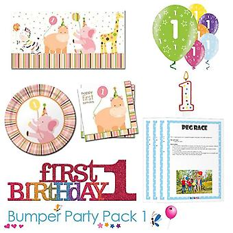 Sweet at 1 Girl 1st Birthday Party Tableware Bumper Pack 1