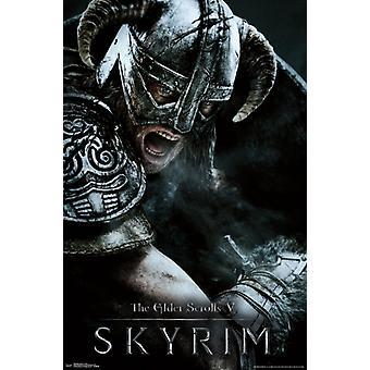 Elder Scrolls V - Aerial Poster Poster Print