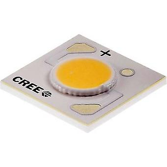 CREE HighPower LED Warm white 10.9 W 343 lm 115 ° 9 V 1000 mA