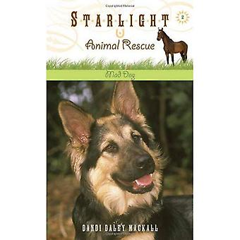 Mad Dog (Starlight Animal Rescue)