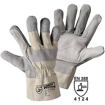 Top-grain cowhide Protective glove Size (gloves): 10, XL EN 388
