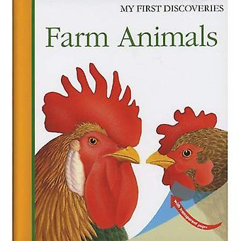 Farm Animals (First Discovery)
