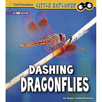 Dashing Dragonflies: A 4D Book (Little Entomologist 4D)