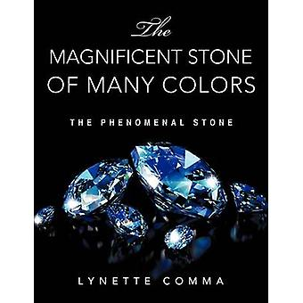 The Magnificent Stone of Many Colors by Lynette Comma - 9781609577735