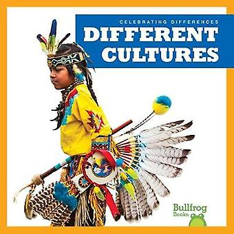 Different Cultures by Rebecca Pettiford - 9781620317228 Book