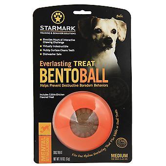 Starmark Bento Ball Medium