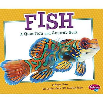 Fish: A Question and Answer Book (Animal Kingdom Questions and Answers)