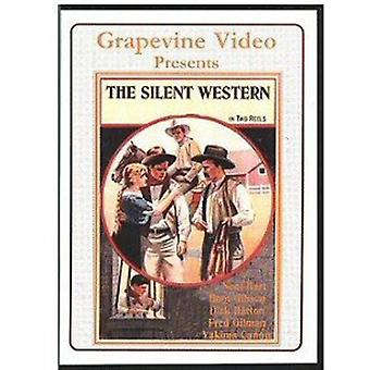 Vol. 1-Silent Westers 1920-27 [DVD] USA import