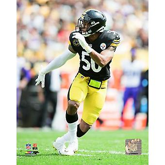 Ryan Shazier 2017 akcji Photo Print