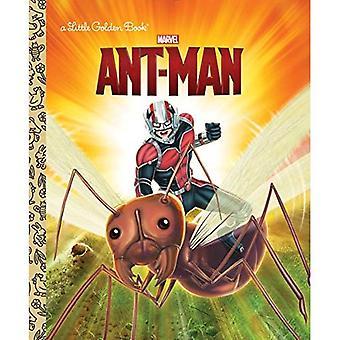 Ant-Man (Marvel: Ant-Man) (gouden boekje)