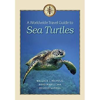 A Worldwide Travel Guide to Sea Turtles (Marine, Maritime, and Coastal Books)
