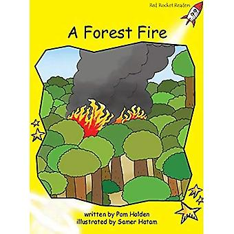 Forest Fire: Level 2: Early (Red Rocket Readers: Fiction Set B)