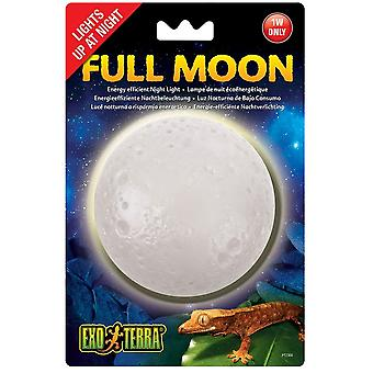 Exo Terra Full Moon Light