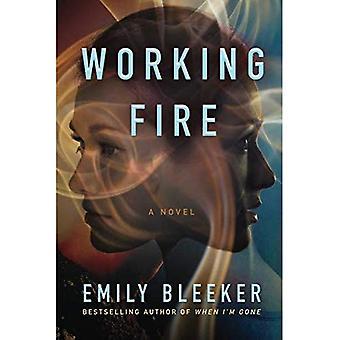 Trabajo de fuego (libro en rústica)