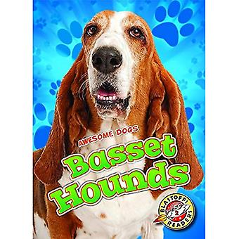 Basset Hounds (Awesome Dogs)