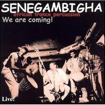 Senegambigha - vi kommer! [CD] USA import