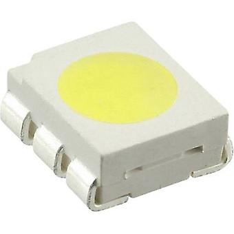 SMD LED PLCC6 Cold white 14600 mcd 50 mA