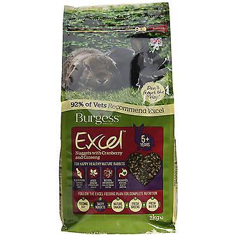 Pepite di Excel di Burgess con menta adulto coniglio cibo