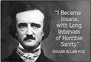 Edgar Allen Poe ''I Became Insane'' fridge magnet