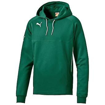 PUMA Hoody Kinder Sweater Power Grün-Weiss