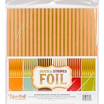 Echo Park Paper Company Dots & Stripes Autumn Gold Foil Stripes 12x12 Inch Collection Kit (DSF17036)