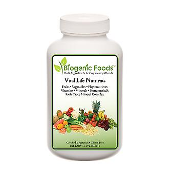 Vital Life Nutrients (TM) - The Complete & Ultimate Green Multi-Vitamin in a Whole Food Base, 120 Rapid Dissolve Tabs