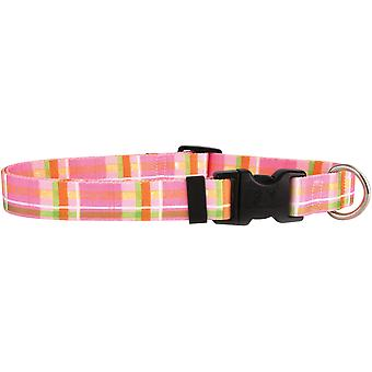 Yellow Dog Collar Medium 14