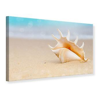 Leinwand drucken die Schale am Strand