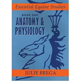 Essential Equine Studies: Anatomy and Physiology: Bk. 1 (Essential Equine Studies): Anatomy and Physiology: 1 (Essential Equine Studies)