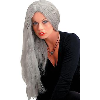 24 Inch Straight Grey Wig For Women
