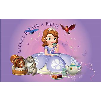Disney Princess Sophia Bettvorleger Teppich 50x80cm