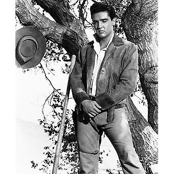 Flaming Star Elvis Presley 1960 Tm & Copyright 20Th Century Fox Film CorpCourtesy Everett Collection Photo Print
