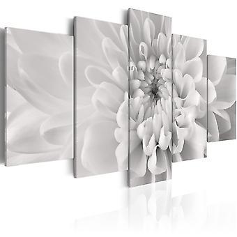 Obraz na płótnie - kwiat Dalia w odcieniach szarości