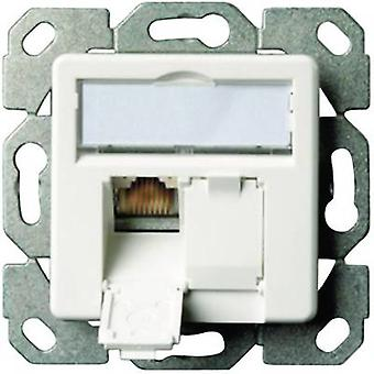 Network outlet Flush mount Insert with main panel CAT 6 2 ports