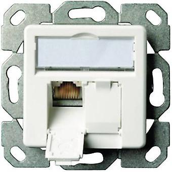 Network outlet Flush mount Insert with main panel CAT 6 2 ports Telegärtner Oyster white