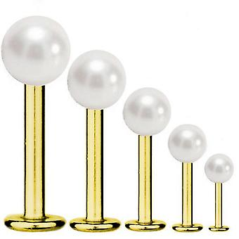 Barra de Labret Stud Tragus Piercing titanio plateado oro 1,2 mm, blanco perla | 5-12 mm