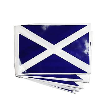 Bunting. Scotland 7m, 25 Flags.