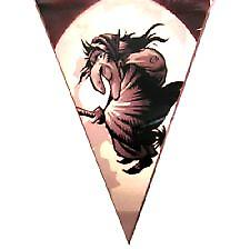 Halloween vimpel Bunting - Witch Design