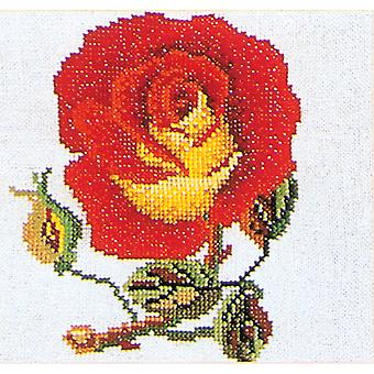 Red with Yellow Rose On Aida Counted Cross Stitch Kit 5 1 8