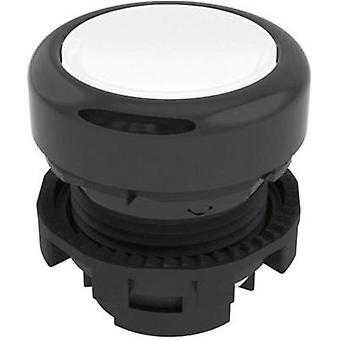 Pushbutton Black Pizzato Elettrica E21PL2R2210 1 pc(s)