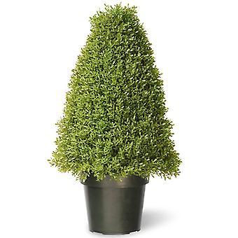 The National Tree 18inch Boxwood Tree with Dark Green Growers Pot