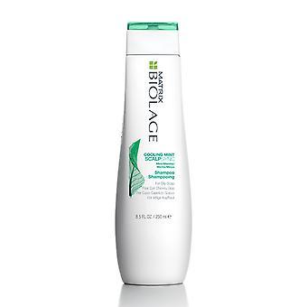 Matrix Biolage Scalpsync refrigeração Mint Shampoo 250 ml